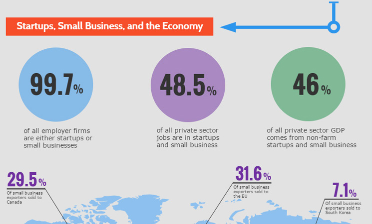 Startups & Small Biz Infographic